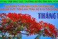 THÔNG BÁO LỊCH THI CHỨNG CHỈ TIẾNG ANH TRÌNH ĐỘ B – K34, TIẾNG M'NÔNG – K39 THÁNG 12