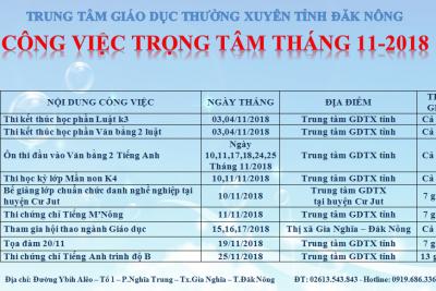 CÔNG VIỆC TRONG TÂM THÁNG 11 NĂM 2018